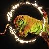 Цирки в Иваново